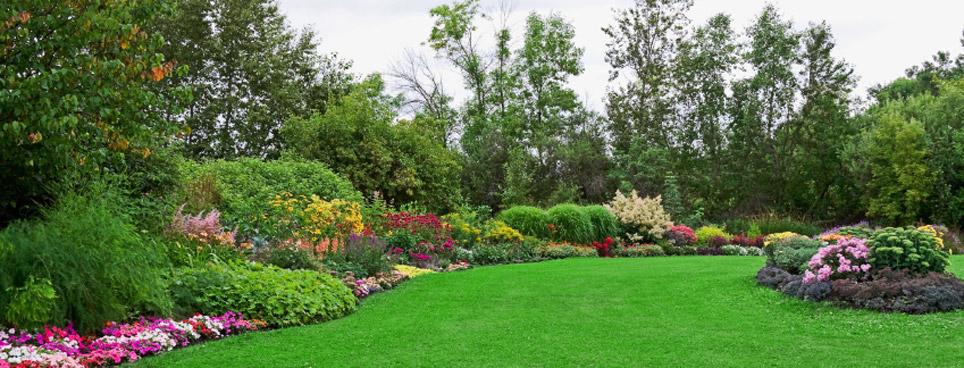Progettazione e realizzazione giardini manutenzione - Giardini mediterranei ...